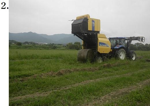 小竹地区除草作業