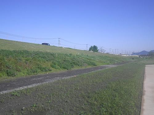 直方管内左岸部河川維持管理工事施工前